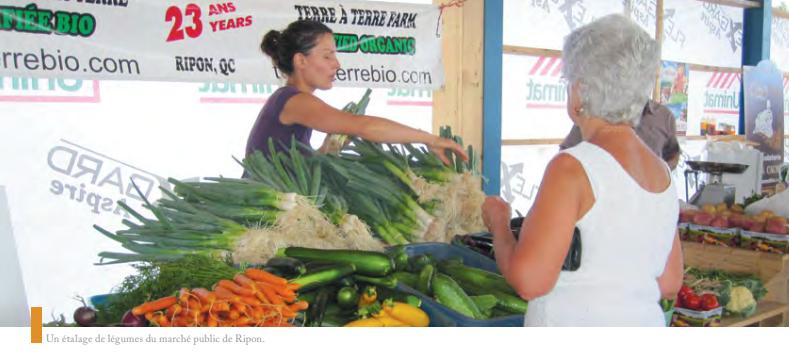 Petite-Nation : Quand coopération rime avec développement local